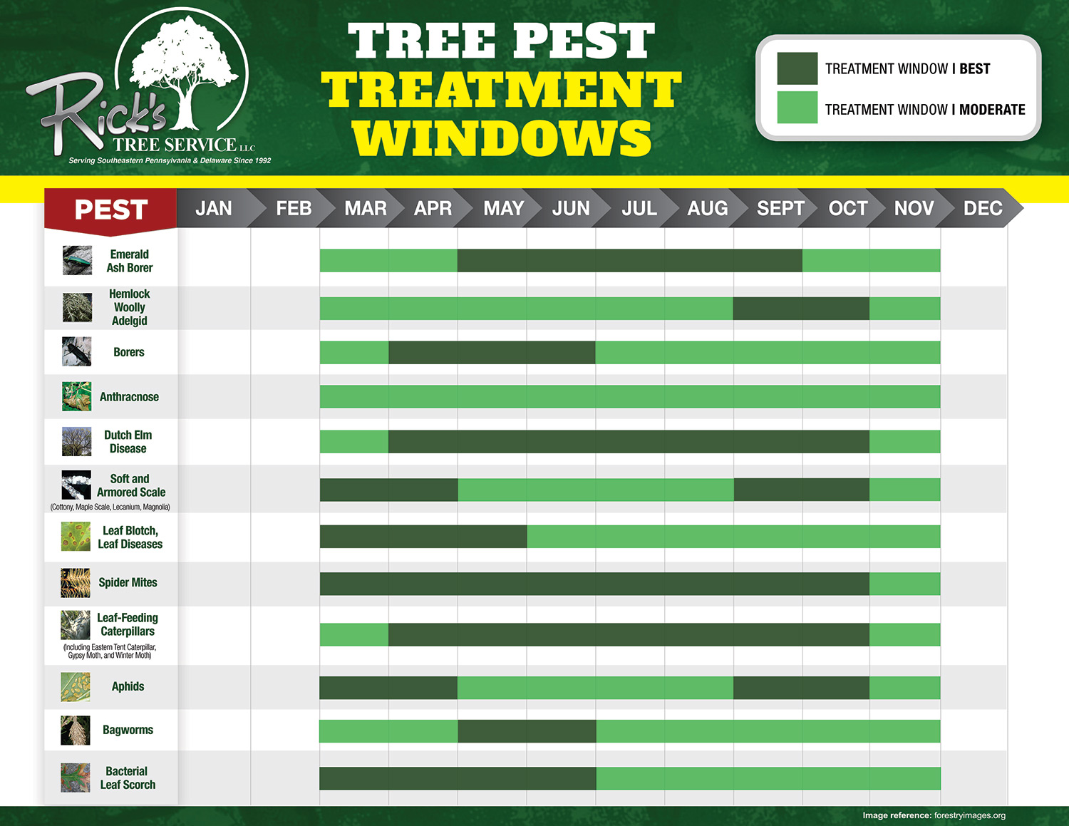Ricks_TreePestTreatmentChart